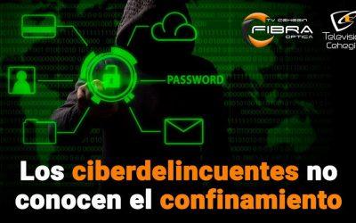 Los ciberdelincuentes no conocen el confinamiento